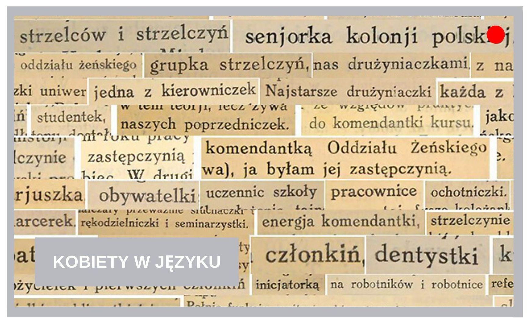Blog Agnieszka Jasińska - Kobiety w języku
